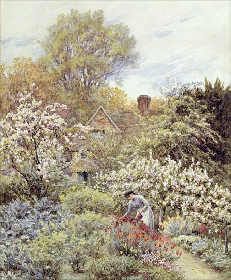 """""""A Garden in Spring"""" by Helen Allingham"""