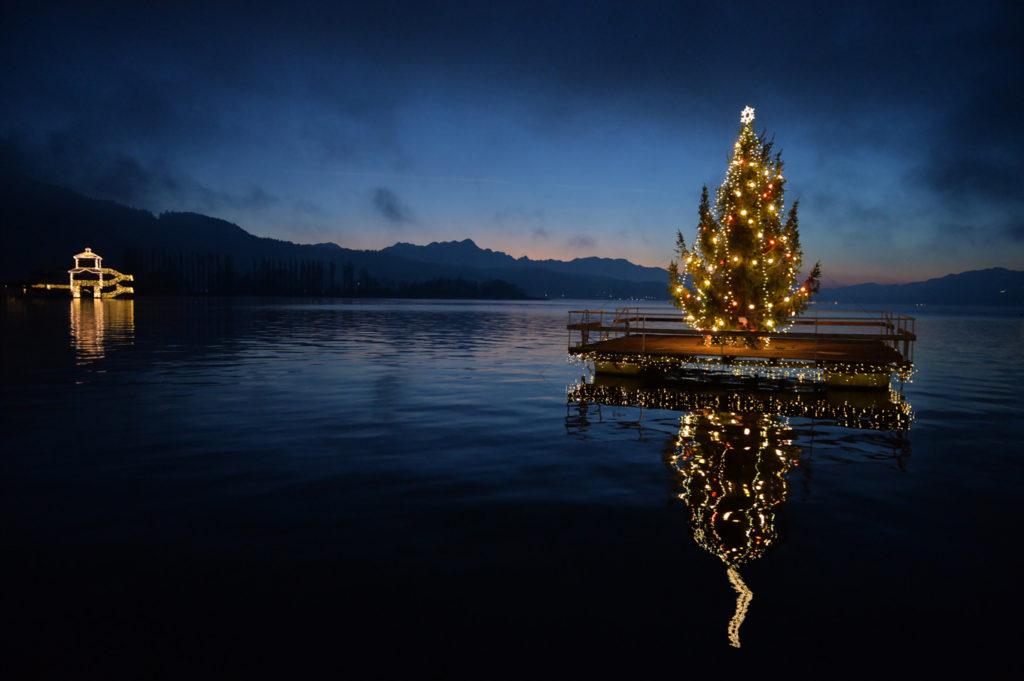 """Illuminierter Weihnachtsbaum für """"Stiller Advent"""" an der Johannes-Brahms-Promenade - Johann Jaritz (licensed under the Creative Commons Attribution-Share Alike 3.0 Austria license)"""