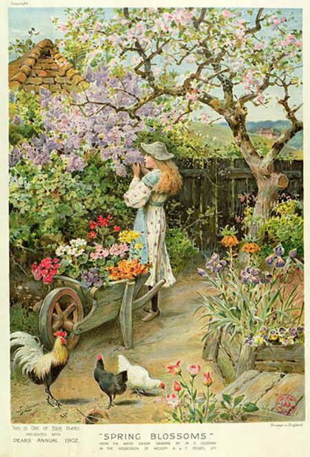 """Spring Blossoms"" from the Pears Annual, 1902 by William Stephen Coleman"