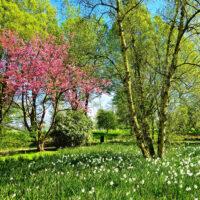 April Poem Spring Song